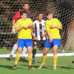 Unbeaten weekend for Swifts teams