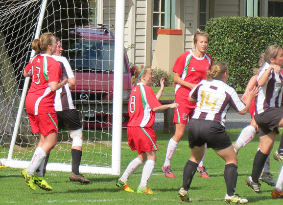 Swifts march on as Ladies bow out in semi-finals