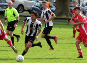 Swifts win final home game