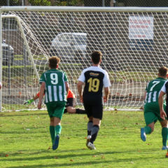 Swifts remain unbeaten as Ladies toppled